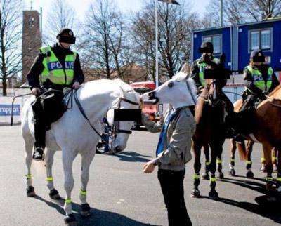 Voici une photo de la police montée suédoise offerte à BIMCAM. André MUHLBERGER a de quoi s'expliquer devant les autorités suédoises en raison de l'Affaire HUSSON / MALBRANCKE. Masquage noir par BIMCAM. Photo inhérente au dossier suédois de MUHLBERGER.